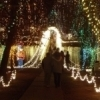 Visitors to the Chickasha Festival of Light can drive or stroll through over 3.5 million twinkling lights in Shannon Springs Park.  The event has been recognized as one of the top ten holiday light shows in the nation.
