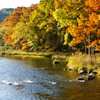 The serpentine Mountain Fork River snakes through Beavers Bend State Park in Broken Bow with areas of rippling rapids running through heavily wooded landscapes that show off stunning foliage each autumn.