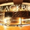 Blackbird Gastropub in Norman blends the rich flavors of traditional pub food with American comfort food to create scrumptious dishes and diverse drink options.