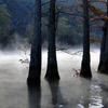 River mist and cypress trees create a serene morning scene at Beavers Bend State Park in Broken Bow.