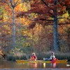 Beavers Bend State Park is set ablaze with colorful foliage each fall.  Enjoy hiking, paddling or fishing among the brilliant hues.
