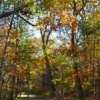 Wintersmith Park, located in Ada, offers a 1.5-mile lighted nature trail and beautiful fall foliage.