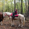 Horseback riding with Beavers Bend Depot through the beautiful woods of Beavers Bend State Park makes for an unforgettable Oklahoma experience.