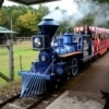 Take a trip around Beavers Bend State Park on a small scale replica of a steam engine train. It takes off from Beavers Bend Depot twice an hour with plenty of opportunities to grab a seat.