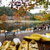 Kayaking, canoeing and paddle boating on Broken Bow Lake are among some of the most popular activities at Beavers Bend State Park.