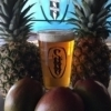 Enjoy special fruit-infused beers at the Twisted Spike Brewery Tasting Room.