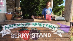 Venture along the Oklahoma Jelly-Making Trails, and stop by Agape House Berry Farm in Mustang.