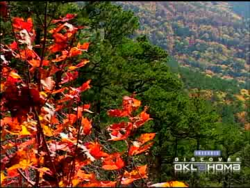 The Ouachita National Forest offers 2 million acres of fall beauty.