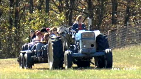 Tour Shepherd's Cross near Claremore and enjoy wholesome farm fun.