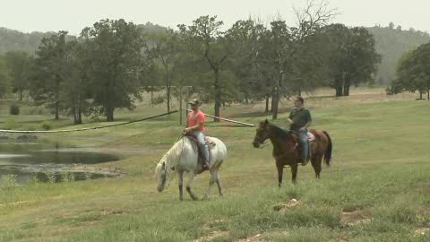 Buffalo Creek Guest Ranch offers all the comforts of home and more.