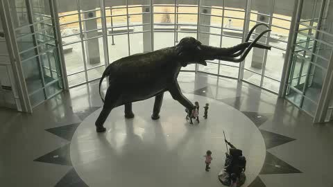 Norman museum walks visitors through millions of years of Oklahoma.