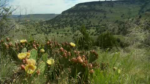 Follow along on a four mile hike to the top of beautiful Black Mesa.
