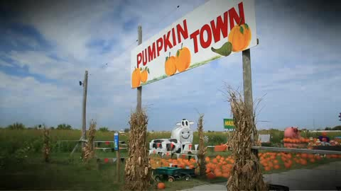 Pumpkin patch and so much more near Tulsa.