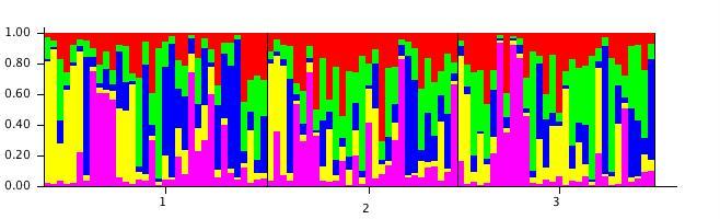 File:20111106 StructureBarPlot a5.jpg