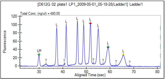 File:BioMicroCenter caliper ladder3.jpg