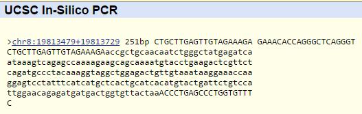 PCR gene.PNG