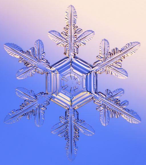 File:Snowflake1 1.jpg