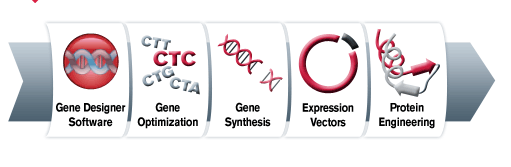 File:DNA2point0 workflow.png