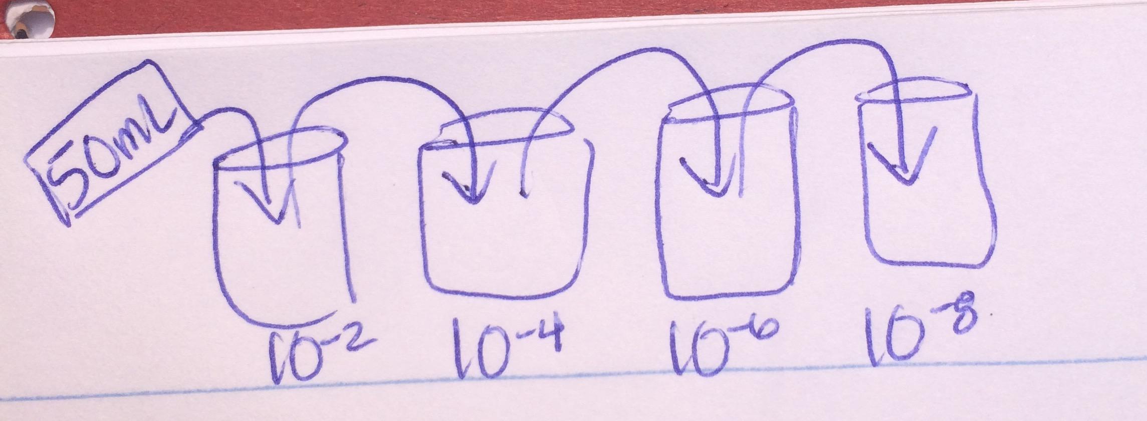 Dilution2 2.jpg