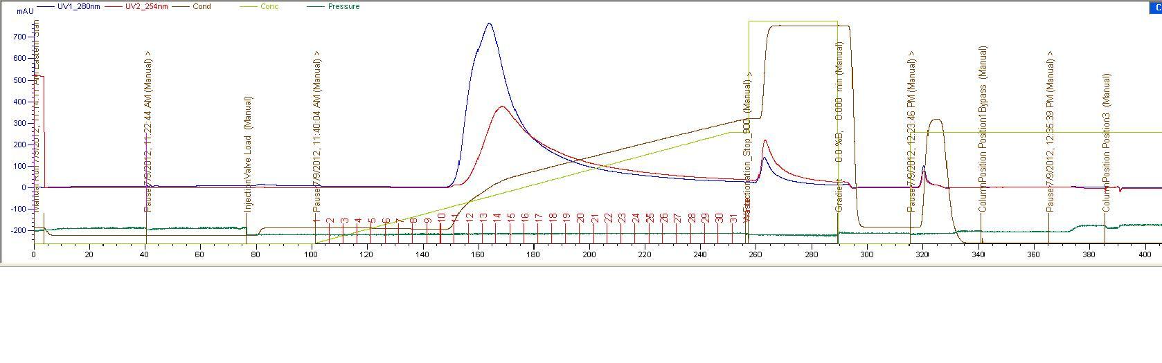 Purification graph 070912.JPG