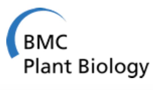 File:Logo BMCPB.png