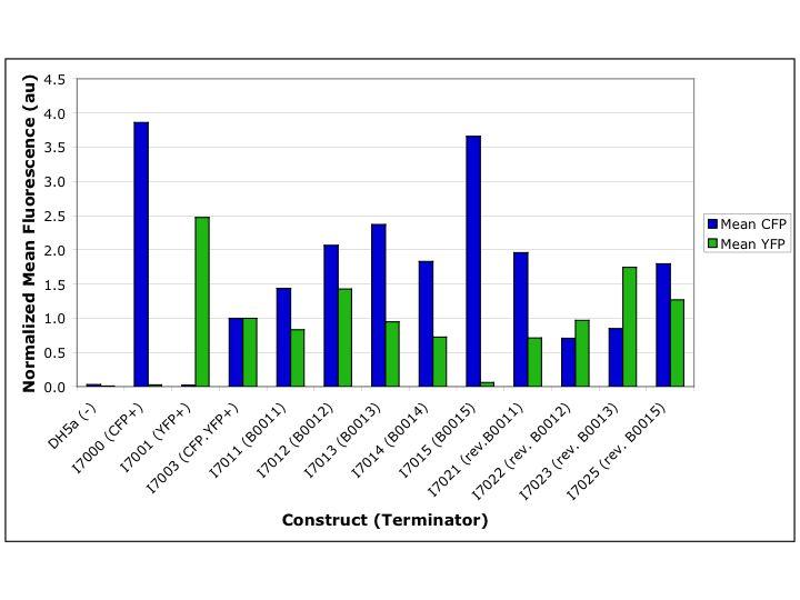 Cconboy Terminator Characterization Normalized Flow Data.jpg