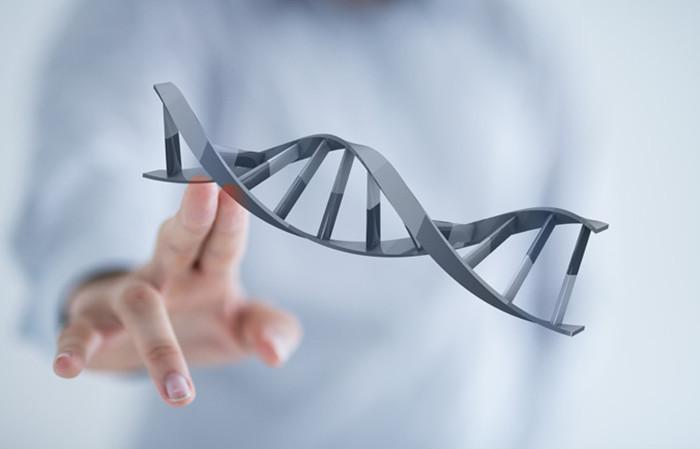 File:DNA2 final.jpg