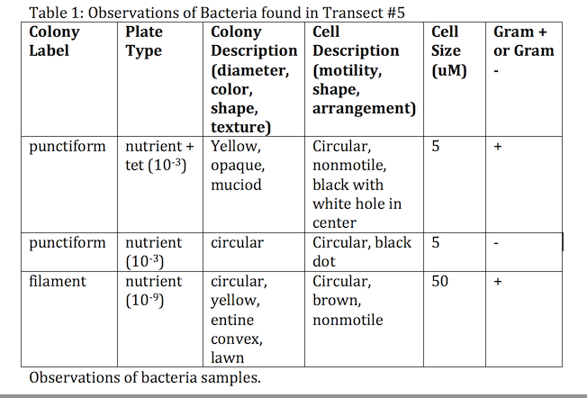 Image:HHS bacteria found.jpg