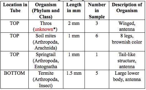 File:Invertebrate Table.png