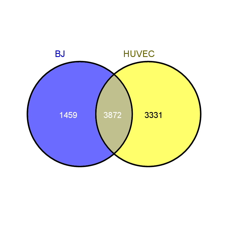 Venn Diagram PICTURE BJ and HUVEC.png