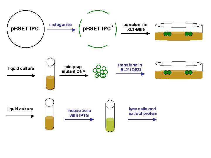 File:20.109 IPC-Schematic.png