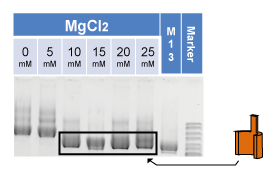 File:1-1(a)-1-wall-MgCl2.png