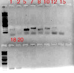 File:2009-10-28.jpg