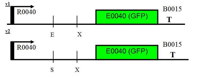 File:I2055-design.JPG
