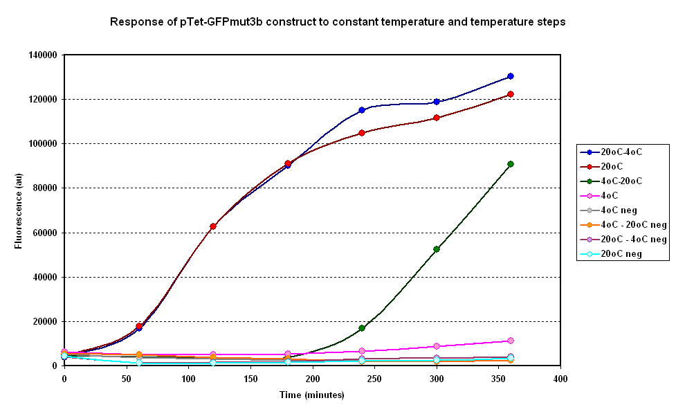 Average fluorescence over time for two samples at constant temperatures of 4&degC and 20°C and two with a temperature step ( 4-20°C and 20-4°C)