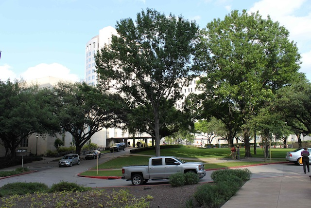 File:UT Med School Houston Campus1-Nagayama lab.jpg