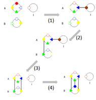 File:Wiki-2' clip image019.jpg