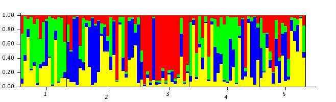 File:20111106 StructureBarPlot c4.jpg
