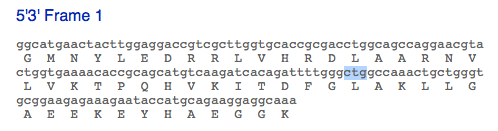 File:Exon21 mutationhighlighted F1320109.png