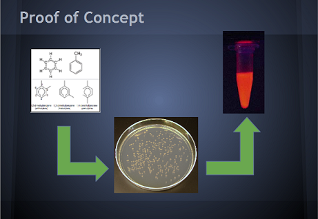Image:Group1proofofconcept.jpg