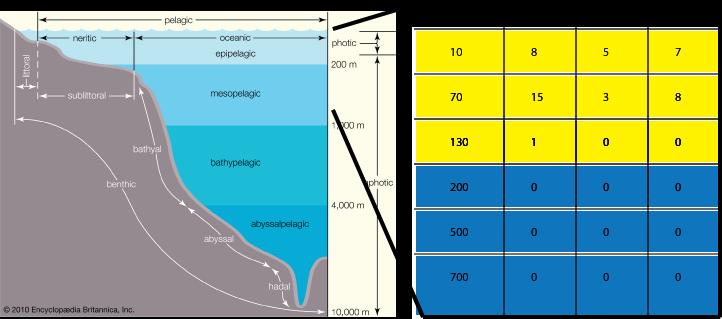 Distribution of PhotoRC family metagenomic sequences along the HOT/ALOHA marine depth column