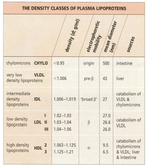 File:Lipoprotein classes.png