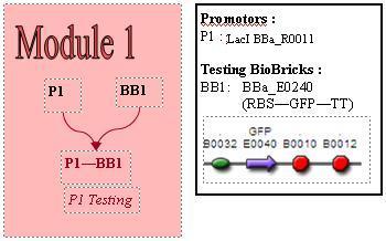 File:M1testp.jpg