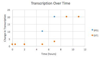 Figure 6b Graph