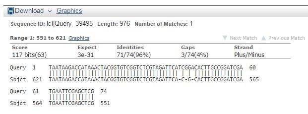 File:BLAST RTG3-6 RTG3-kanC.PNG