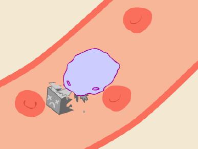 DNA nanorobot eaten.png