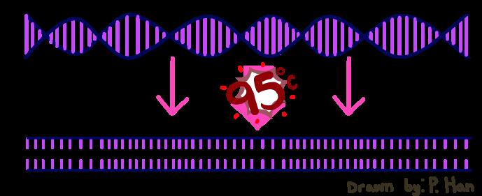 PCRRG121.png