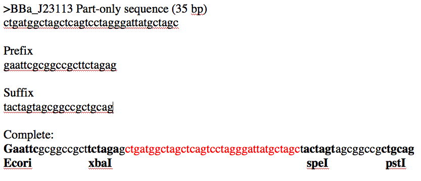 Low promoter sequence.png