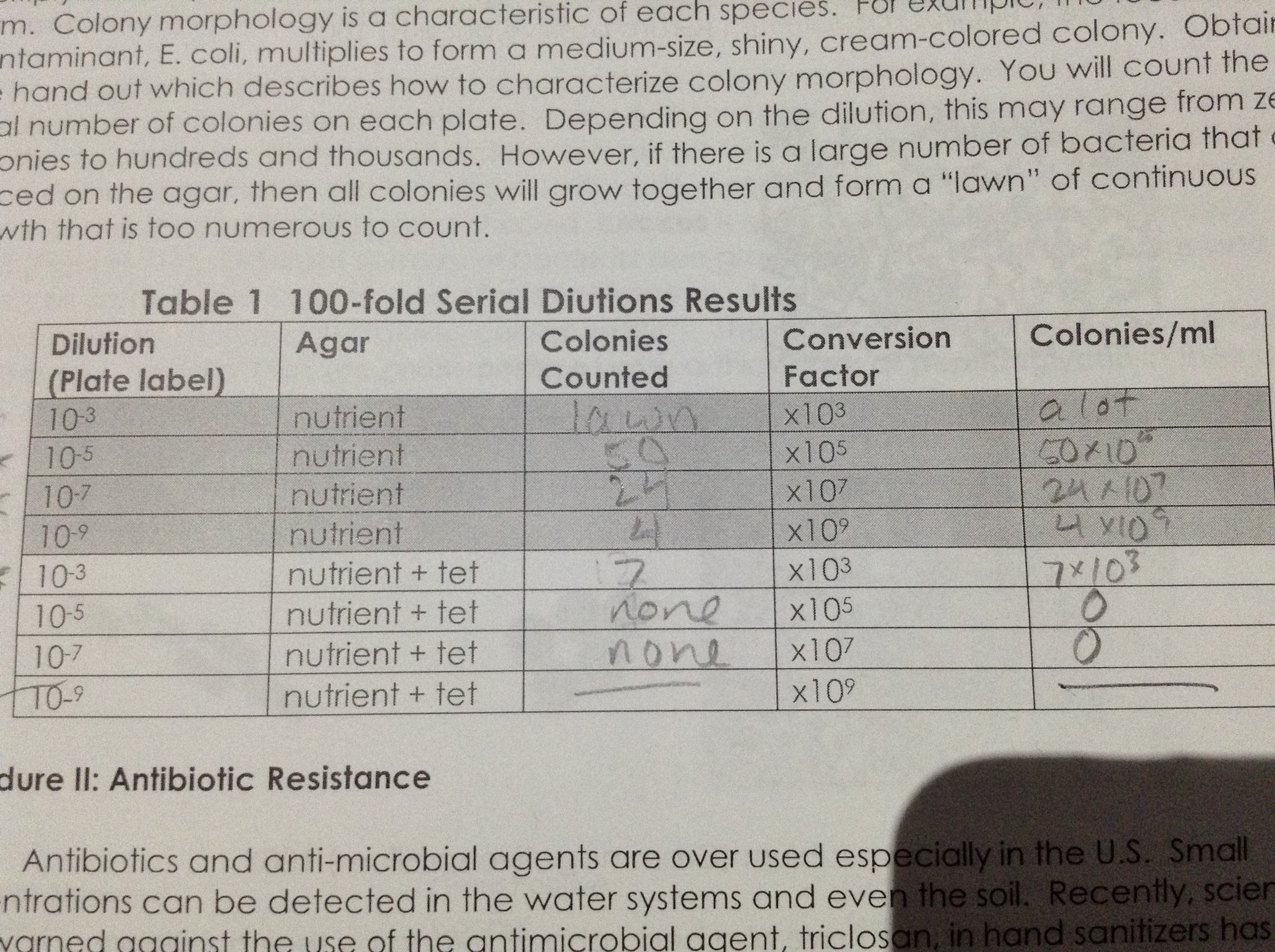Image:Serial Dilution Results 001.jpg