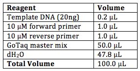 File:BME103 Group1 Protocol.png